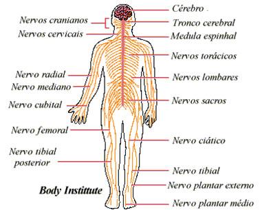 corpo fisico 07